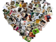 Heart Shaped Photo Canvas Collage