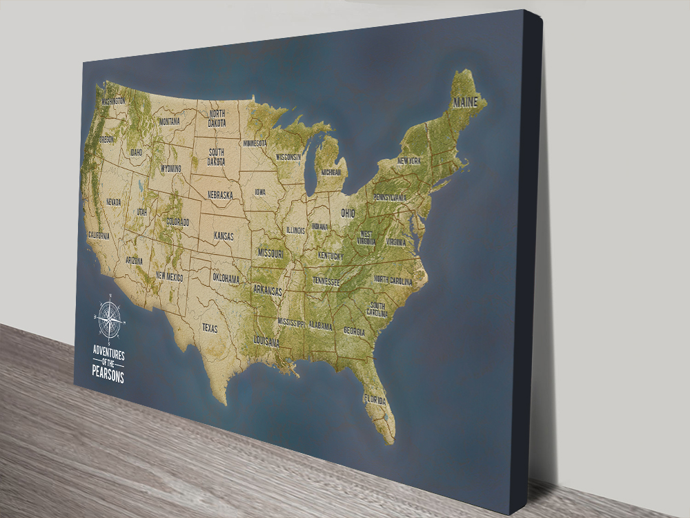 Custom Push Pin USA Map Art