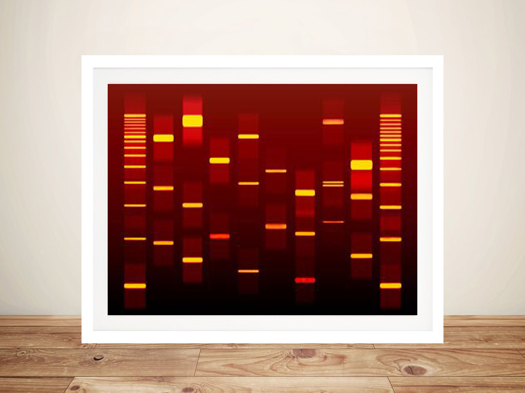 Buy Personalised DNA Art Australia