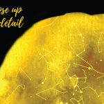 Personalised Star Map Style 15 – Gold 4