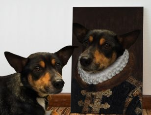 Personalised Pet Portrait Canvas Art