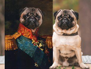 Baron Personalised Pet Portrait