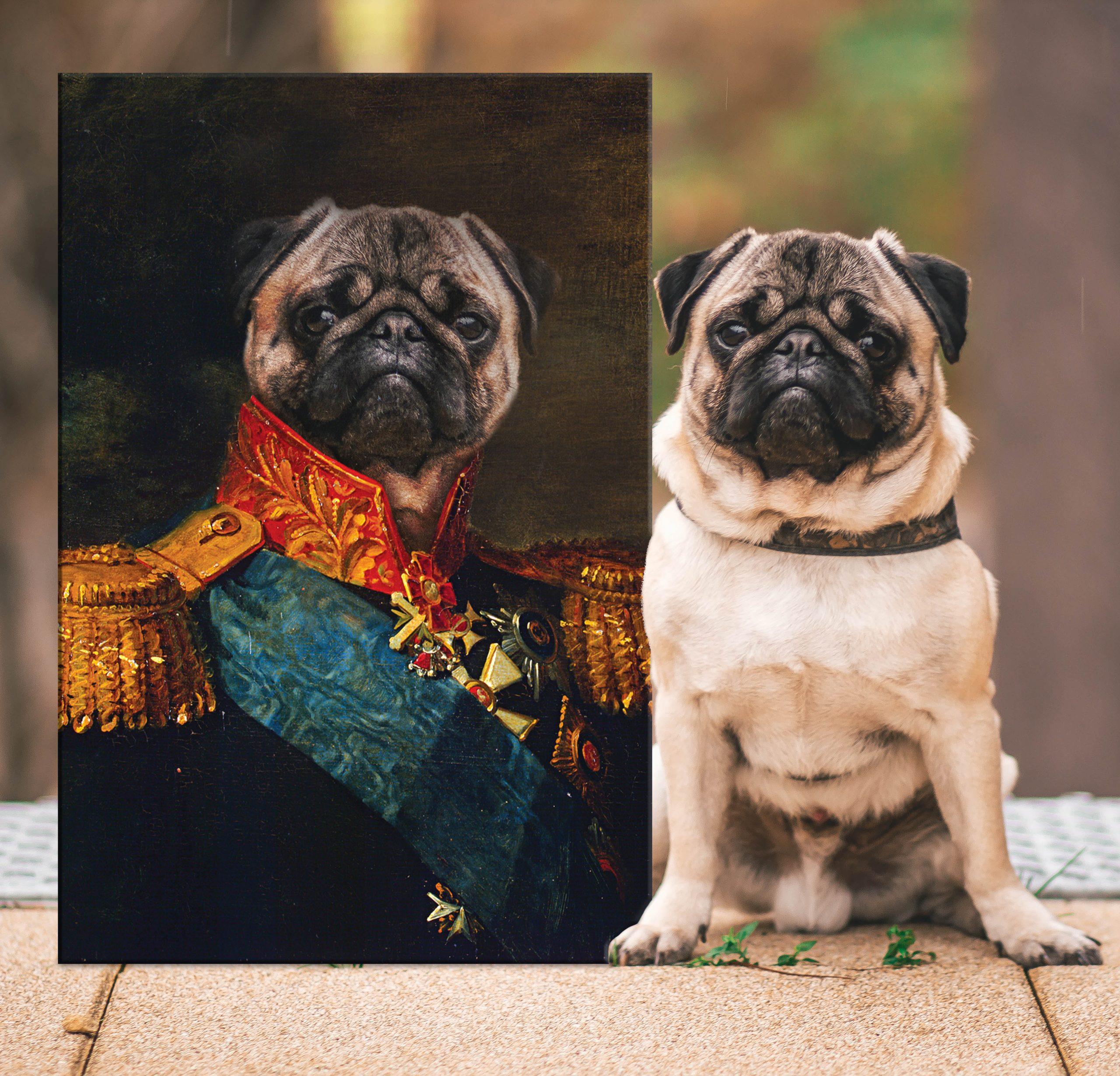 Baron Personalised Pet Portrait | Baron