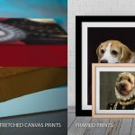 Quality-Custom-Pet-Portrait-Prints-Pictures-Australia