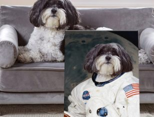 Buy a Personalised Framed Astronaut Pet Portrait