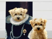 Buy a Custom Baroness Personalised Pet Portrait