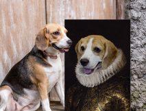 Buy Royal Dog Portrait Australia