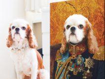 Custom Dog Pet Aristocracy Portrait