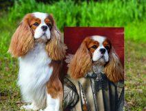 Personalised Pet Aristocracy Portrait Art