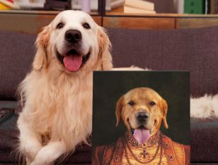 Buy a Personalised Lady Dawg Pet Portrait