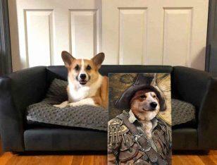 Personalised Pirate Dog Portrait Canvas Prints