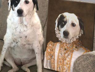 Buy Princess Personalised Pet Portrai