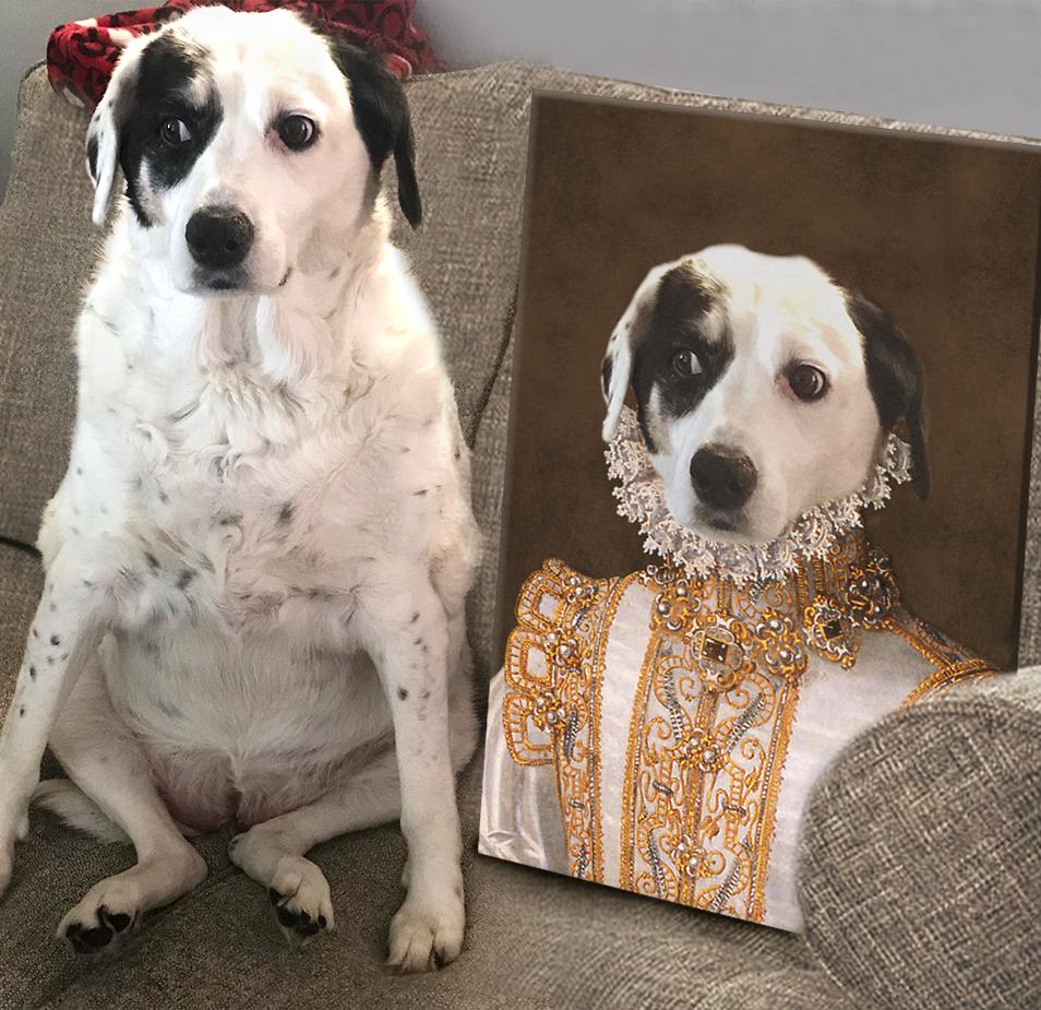 Buy Princess Personalised Pet Portrai | Princess