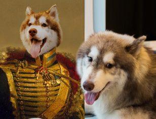 Viscount Custom Royal Pet Art